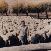 Juan Juaristi Sheepherder.jpg