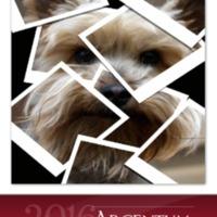 Argentum2016 PDF.pdf